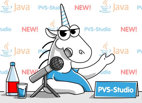 https://import.viva64.com/docx/blog/0649_PVS_Studio_for_Java_Mini/image1.png