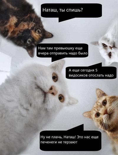 https://import.viva64.com/docx/blog/0773_Online_Almighty_2020_ru/image4.png